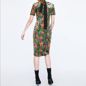 NWT Zara Floral velvet midi dress